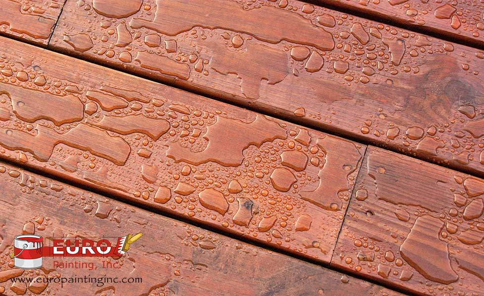 Deck Cleaning and Maintenance Part 1